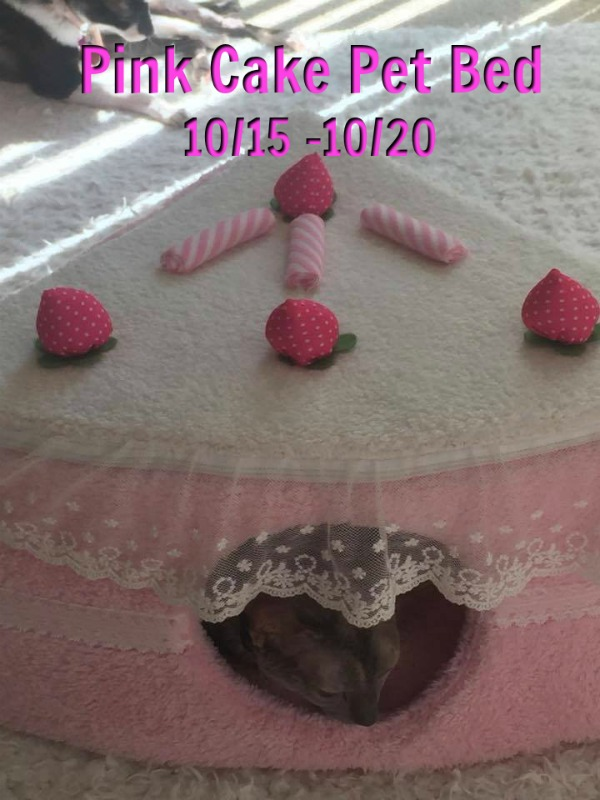 pink-cake-pet-bed-giveaway