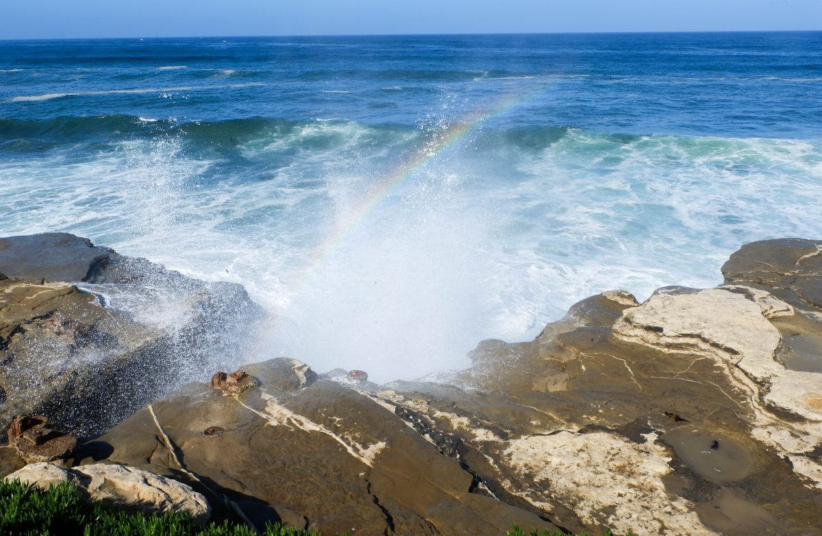 kid-friendly places in Southern California - La Jolla