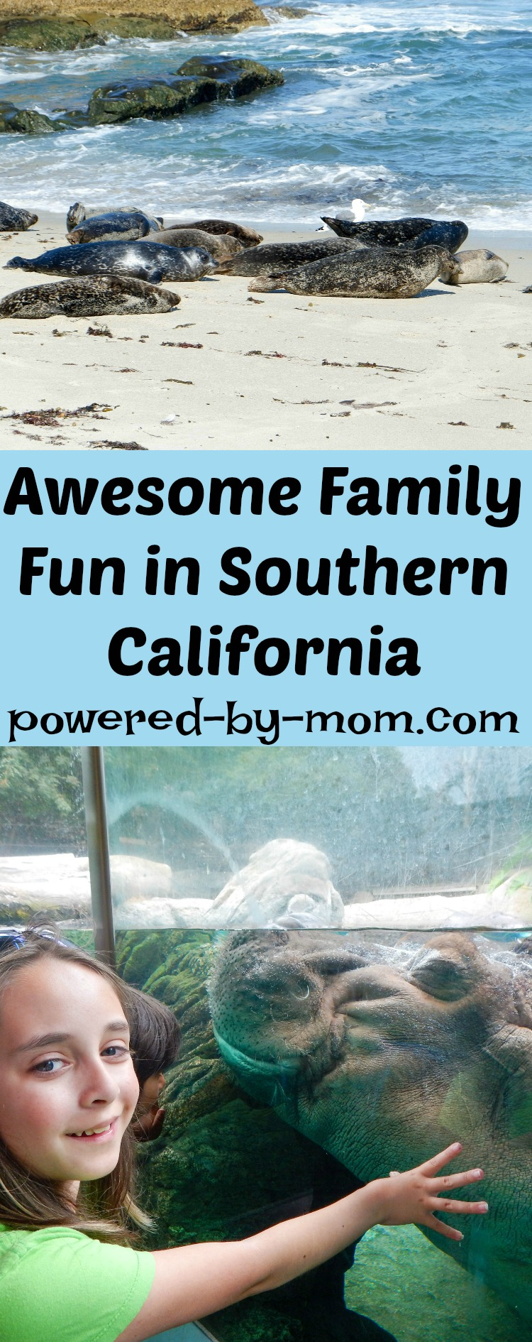 kid-friendly places in Southern California - La Jolla seals and sea lions childrens pool
