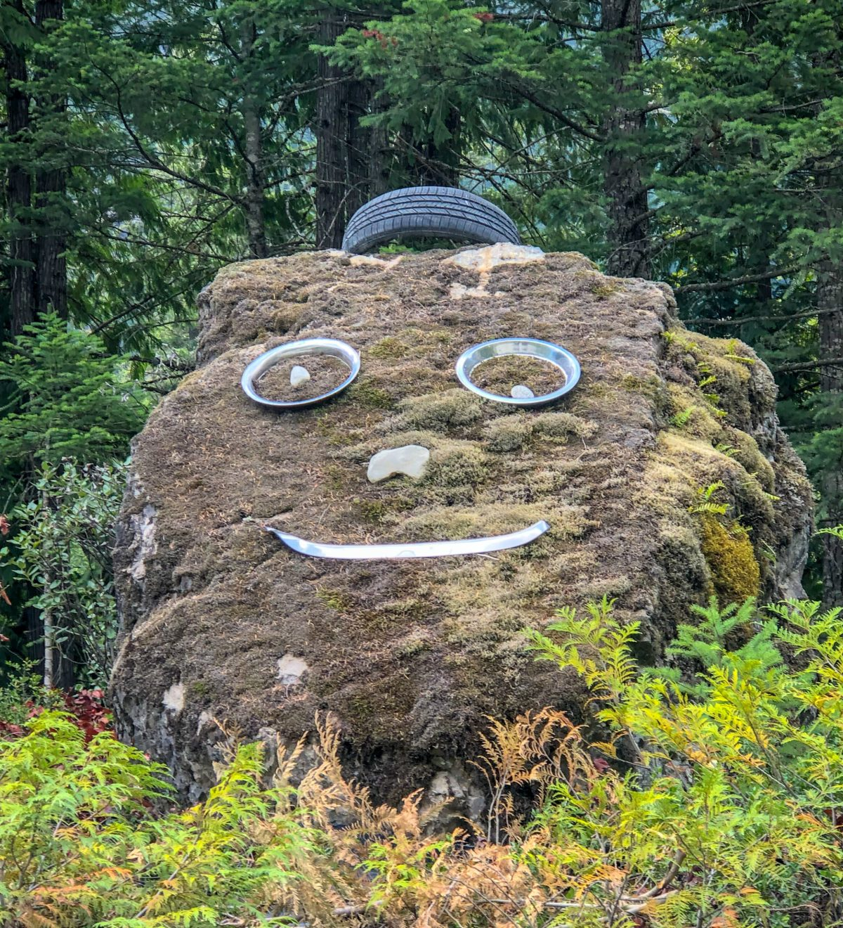 rock art discovered in Harrison Hot Springs area