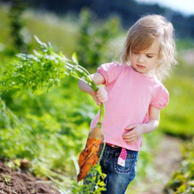 Activities to Encourage Healthy Eating Habits in Kids