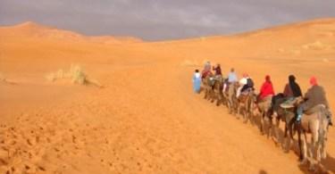 sahara desert camel trek