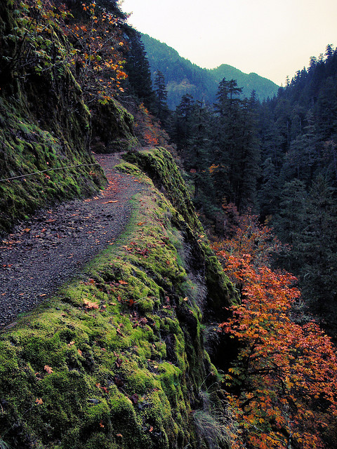 eagle creak hike in Columbia River gorge