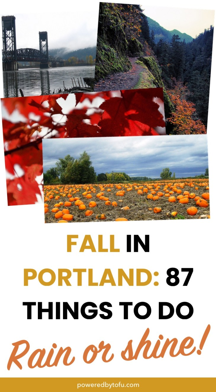 fall in Portland, hikes, leaves, bridges, pumpkins and always rain.