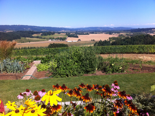 best view goes to Penner ash wine cellar!