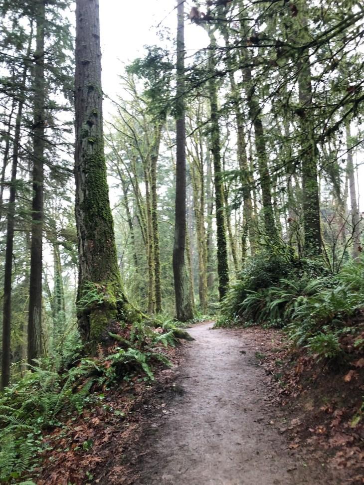 portland winter hikes
