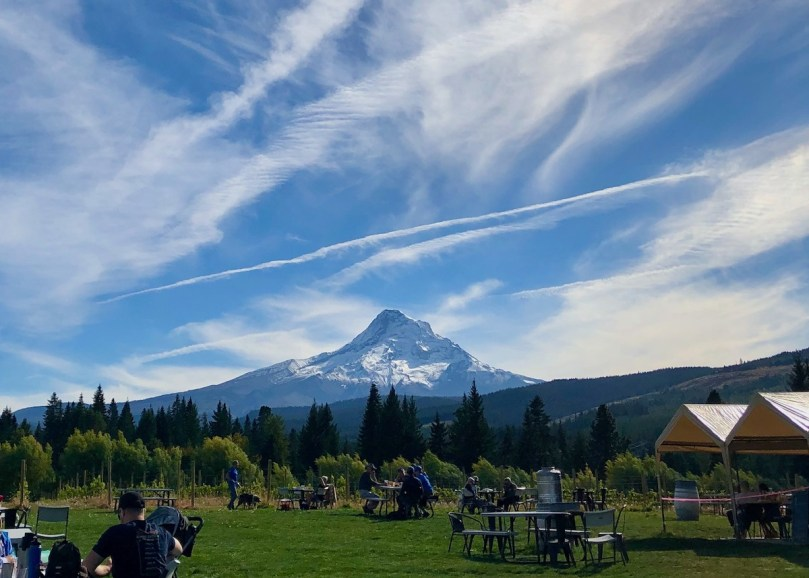 Mountain View Orchards & Brewery