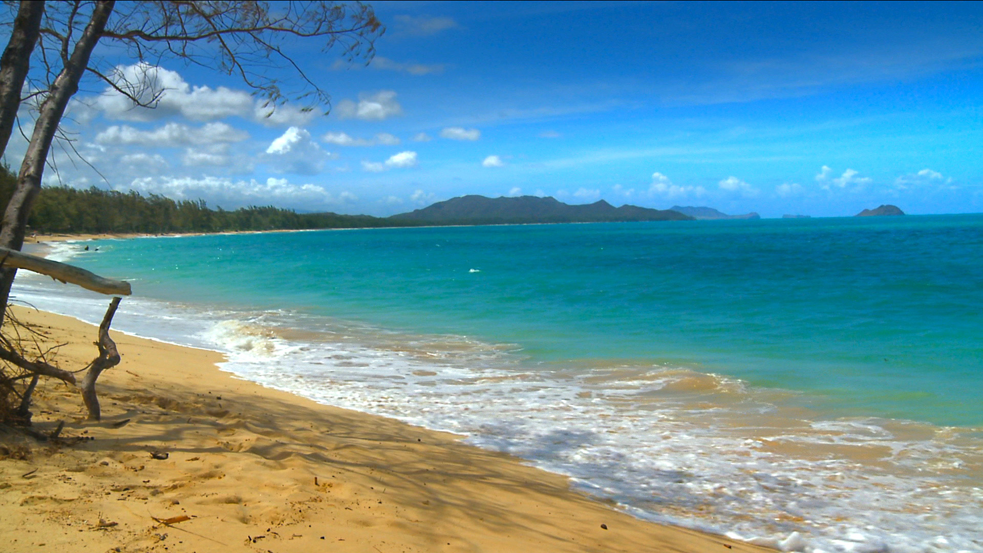 SEE The Most Beautiful Hawaii Beaches Photos from our new