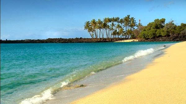 Beautiful Hawaii Beaches Hd Video Dvd & Blu Ray #1 Nature