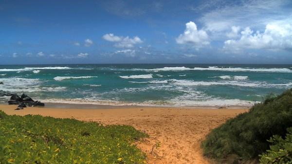 Hawaii Beach Screensavers