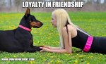 "Loyalty in friendship ""How to be a loyal friend"""