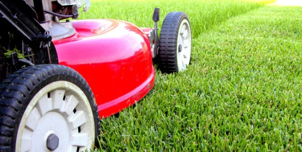 tools and equipment lawn care
