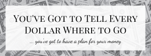 Tell Every Dollar Where To Go