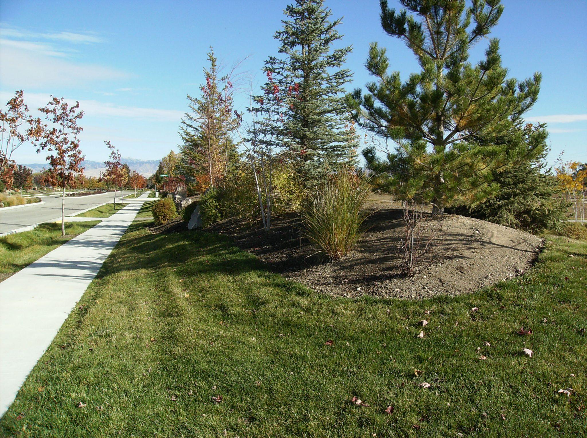 Boise landscape design