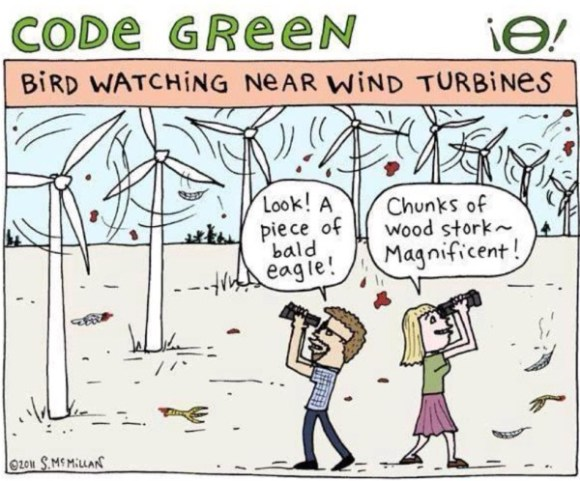Code Green Windmill copy