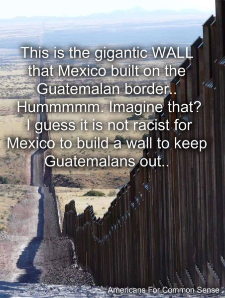 Mexico's Wall copy