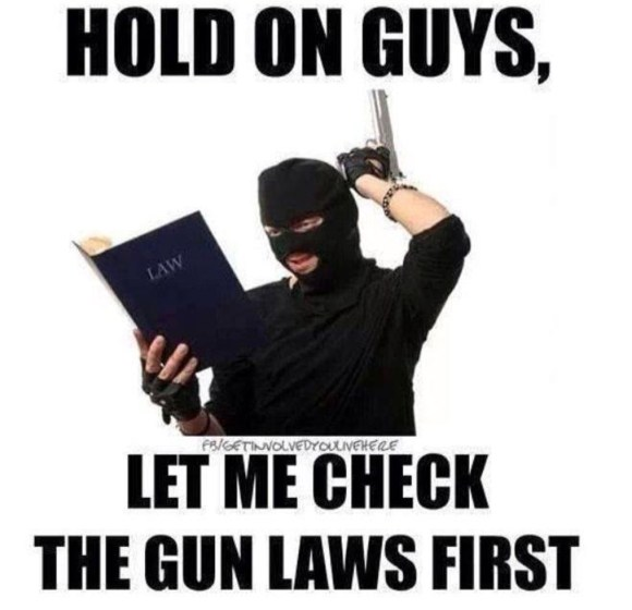 Check Gun Laws copy