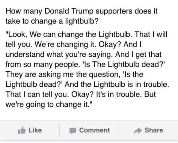 Trump Light Bulb