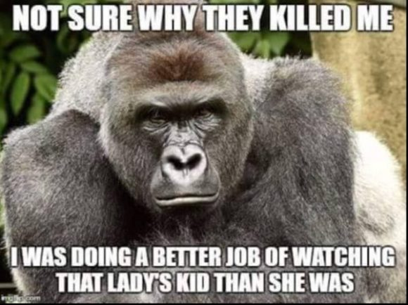 Gorilla Killed copy