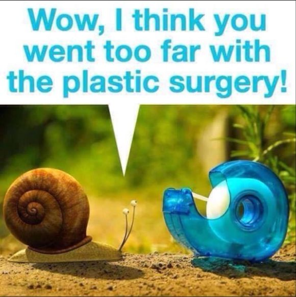 plastic-surgery-copy