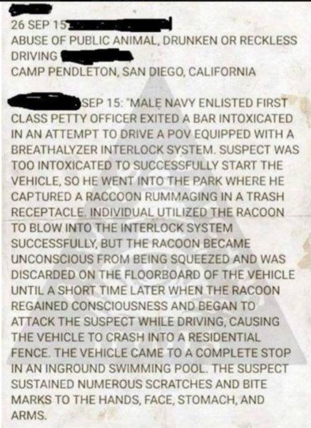 Greatest. Crime. Report. Ever.