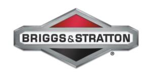 017 Brigs n Stratton