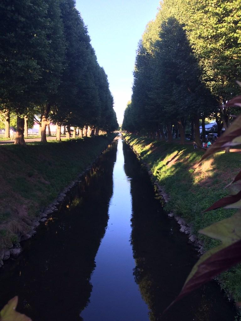 Reflexion des Himmels und der Umgebung auf einem Fluss, der durch eine Allee verläuft. ->perfect reflections