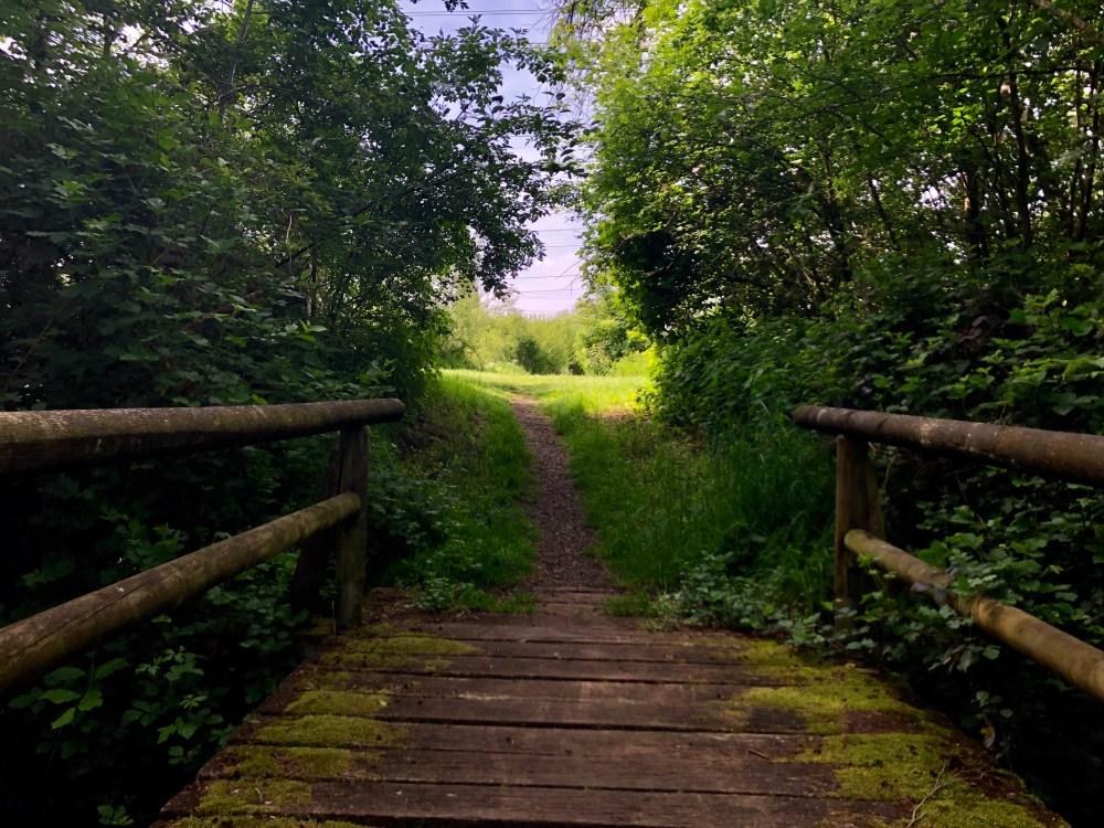Holzbrücke über einem Fluss zum Beeder Brünnchen im Bliesgau Biosphärenreservat