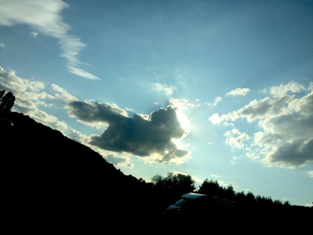 Ein Wolkentier, das über den Wald springt