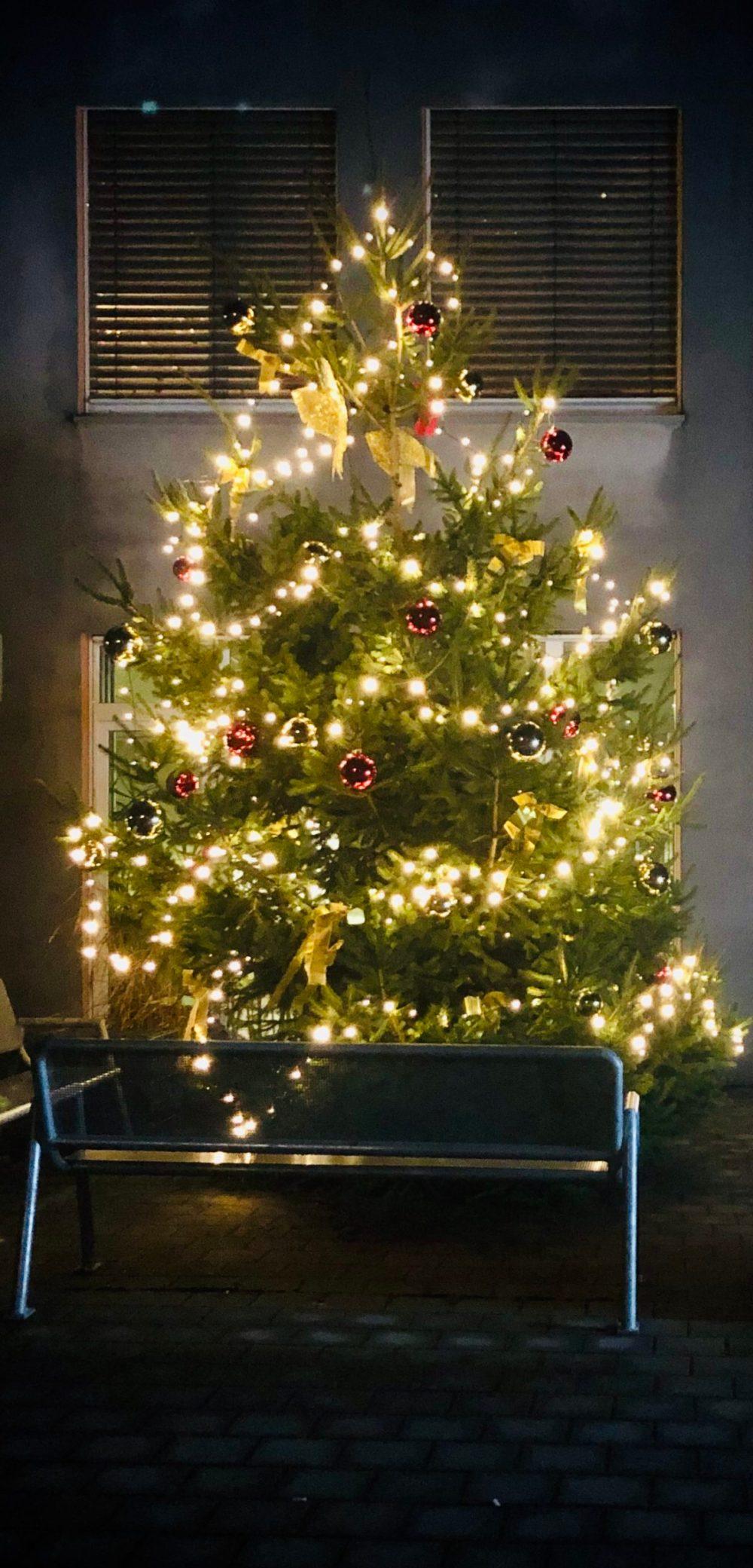 Strahlender Weihnachtsbaum hinter einer Bank