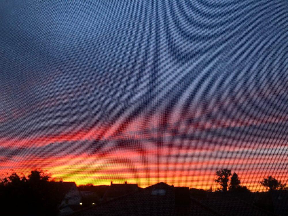 Sonnenuntergang durch ein Fliegennetz fotografiert