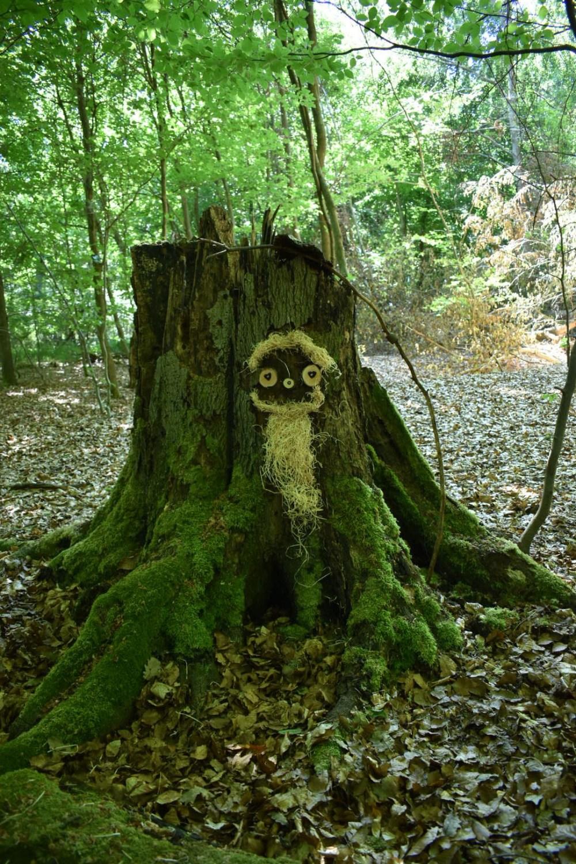 Kunst am moosigem Baumstamm, von der 5-Weiher-Tour aus fotografiert