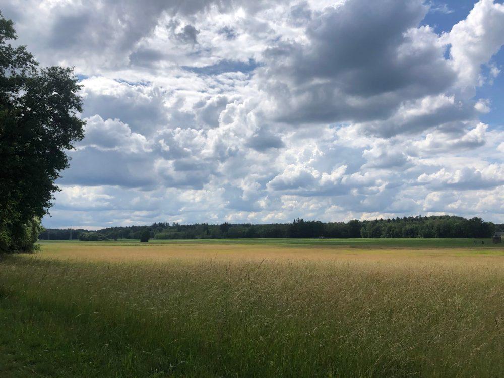 Weites Feld unter sehr stark bewölktem Himmel