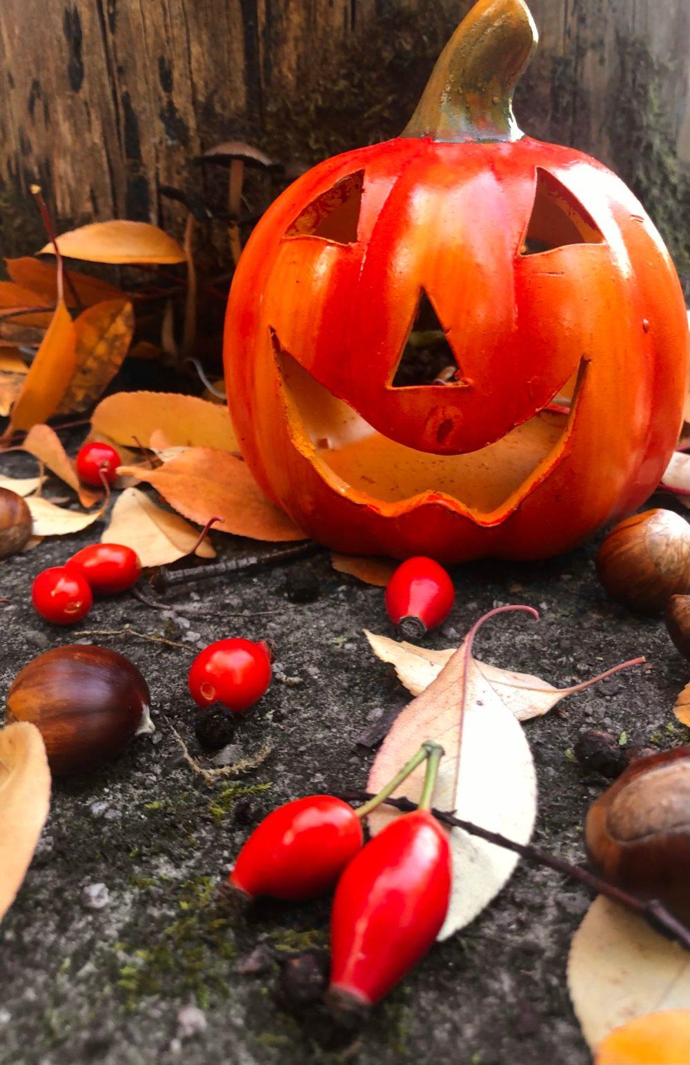 Halloween-Stillleben im warmen Ton