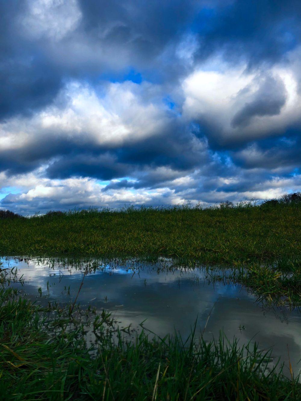 Wolkenspiegelung mit geringer Belichtung und kälterem Farbton bearbeitet