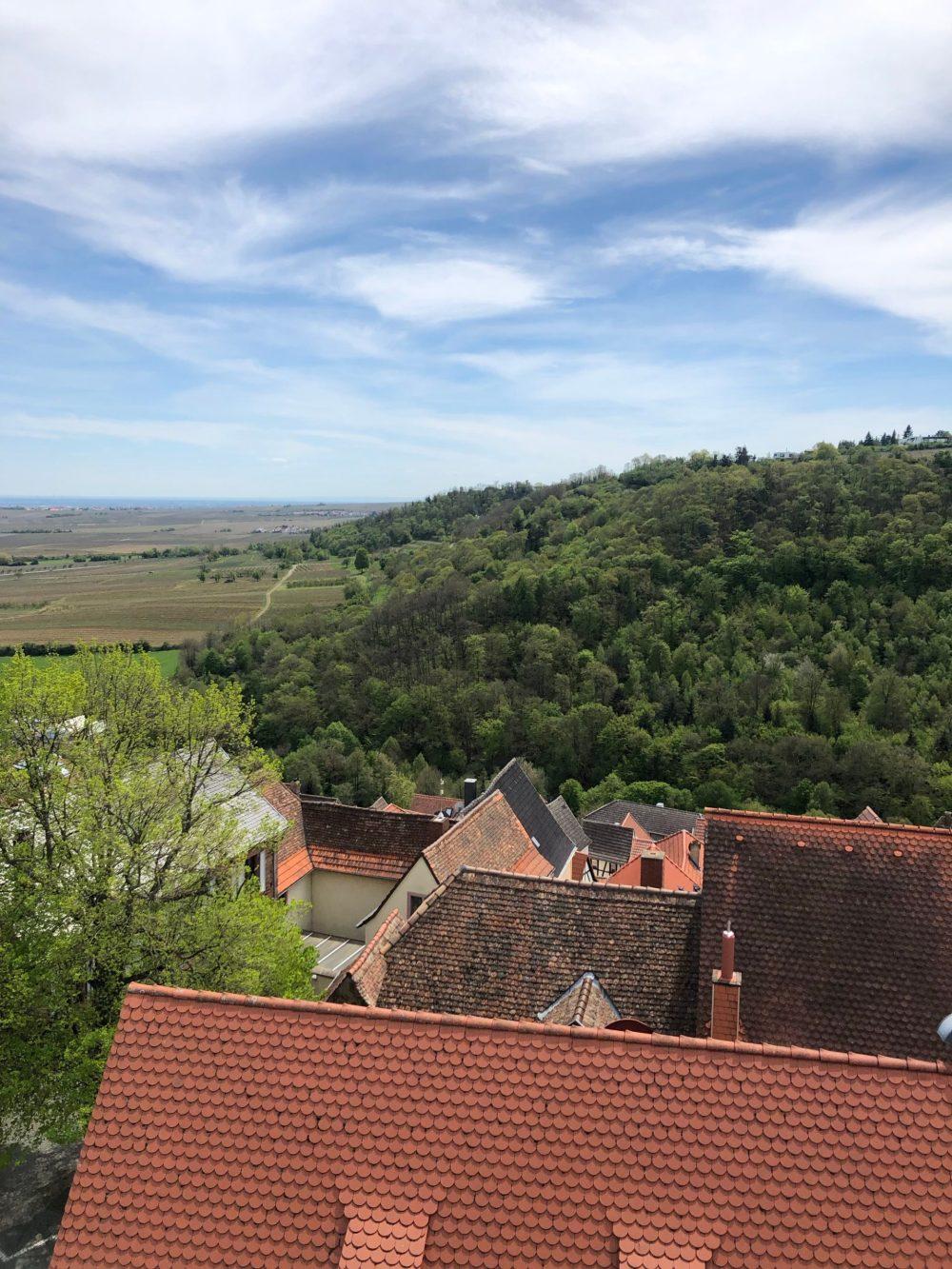 Blick über die Dächer von Neuleiningen