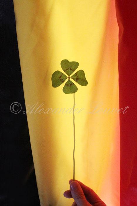 "Photo ""Kleeblatt"" Belgium 4 Regions 70X50"