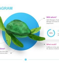 a turtle diagram hr [ 1365 x 767 Pixel ]