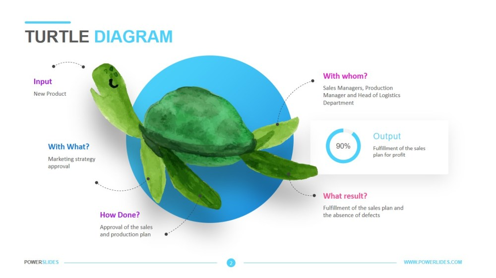 medium resolution of a turtle diagram hr