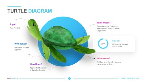 small resolution of a turtle diagram hr