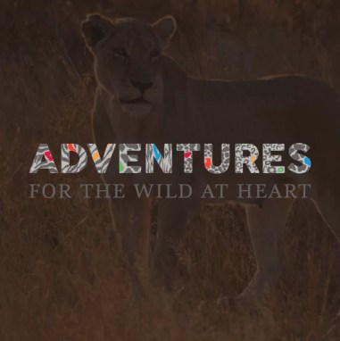 Adventures for the Wild at Heart Logo
