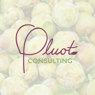 Pluot Consulting Logo & Business Cards