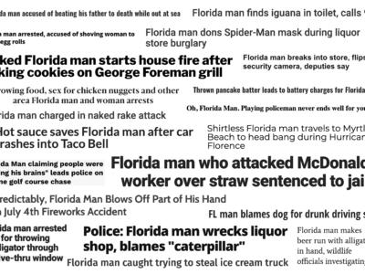 "A collection of ""Florida man"" headlines from news websites (Ren LaForme/Poynter)"