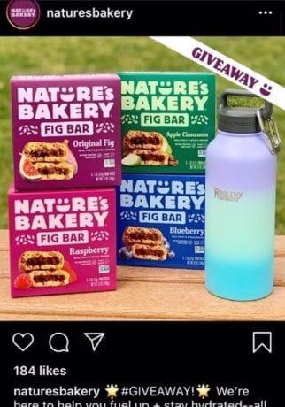 Natures Bakery Ad Screenshot