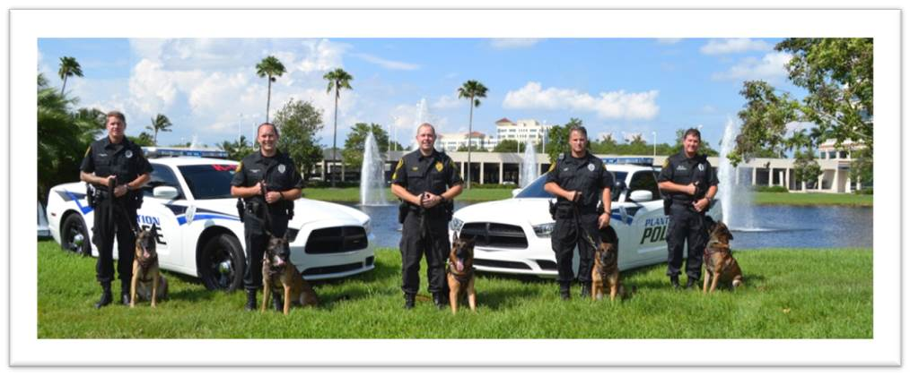City of Plantation Police K9