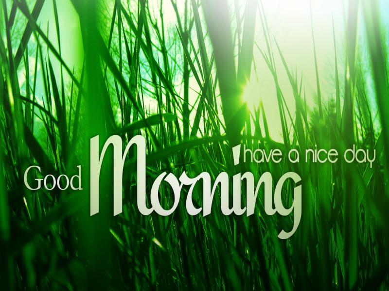 Good Morning Have Nice Day Presentation Backgrounds For Powerpoint Templates Ppt Backgrounds