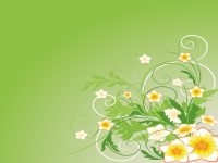 Green Abstract Flowers Backgrounds - Abstract, Flowers ...