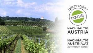 """Erste österreichische Weingüter """"zertifiziert nachhaltig"""" © Foto: ÖWM - Armin Faber"""