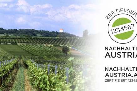 Reges Interesse am Zertifizierungstool für nachhaltigen Weinbau in Österreich