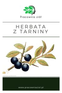 Herbata tarninówka z tarniny (dzikiej śliwy) pracownia ziół i zdrowej żywności- sklep z ziołami i herbatami